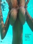 Красивая негритянка с огромными натуральными сиськами под водой, фото 6