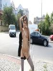 Телка на улице публично задирает платье без трусов показывая красивую голую попку и киску, фото 9