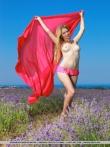 Девушка с длинными волосами голышом в цветочном поле, фото 11