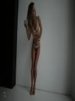 Девушка с красивой спортивной фигурой в просвечивающим нижнем белье, фото 2