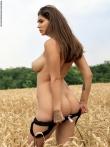 Голая с большими сиськами в поле ржи, фото 11